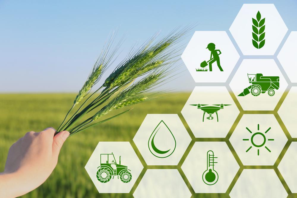 1 Agrár digitális alapismeretek