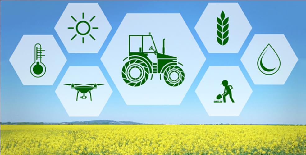 19 Digitális szolgáltatások a mezőgazdaságban